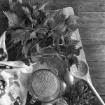 maaltijdsoep-onkruid-diana-van-ewijk