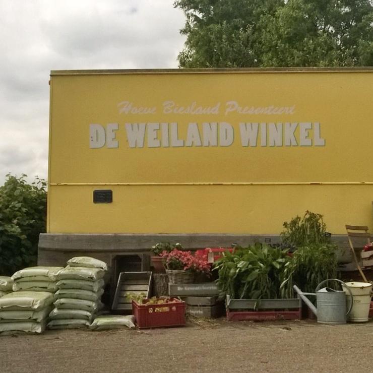 lekker-lokaal-rotterdam-diana-van-ewijk