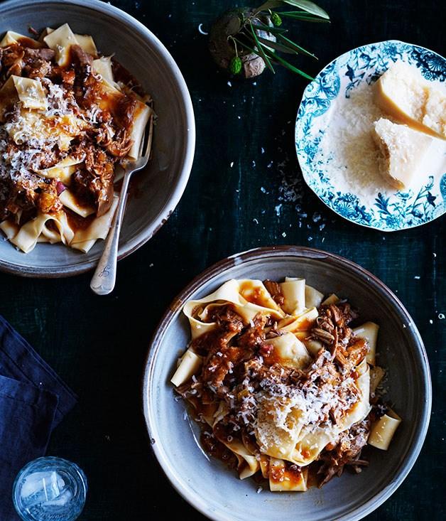 0314GT-italian-bird-recipes-duck-ragu
