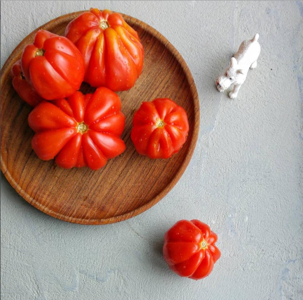 winterse tomatensoep diana van ewijk