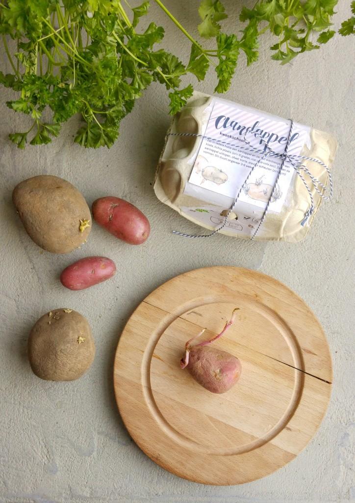 Zelf aardappels kweken is leuk, lekker en makkelijk. Kiem ze voor met dit schattige Aardappel Kweekschooltje. (printable)
