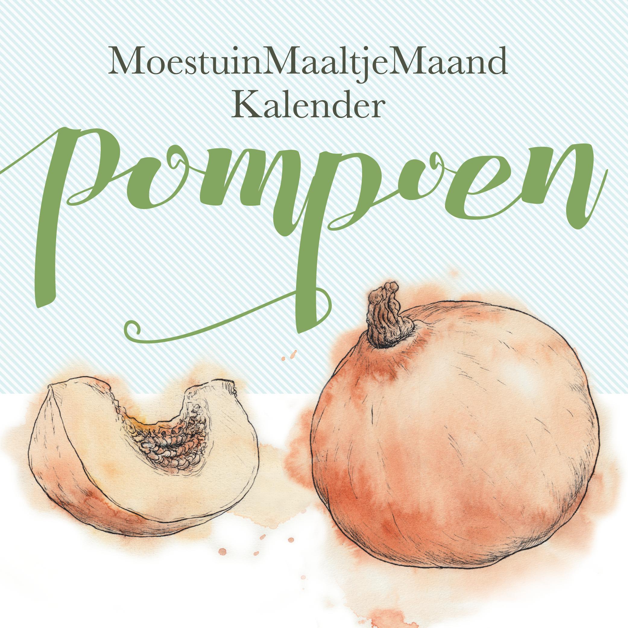 Zelf pompoen kweken? Moestuintijger Meriam Beek legt uit hoe je dat doet.Met verrassend pompoenrecept voor straks, in de herfst...