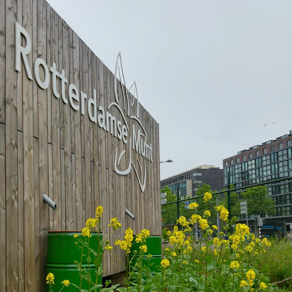 Lekker Lokaal Podcast: interview serie van Soephoofd.nl met en over kleinschalige voedselondernemers in en om Rotterdam.