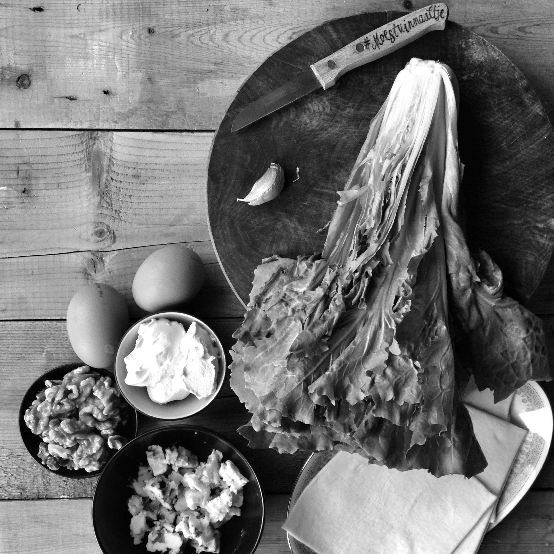 moestuin-recept-andijvie