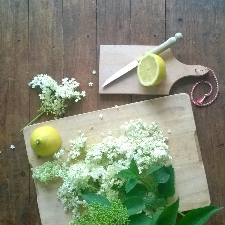 koken met onkruid diana van ewijk