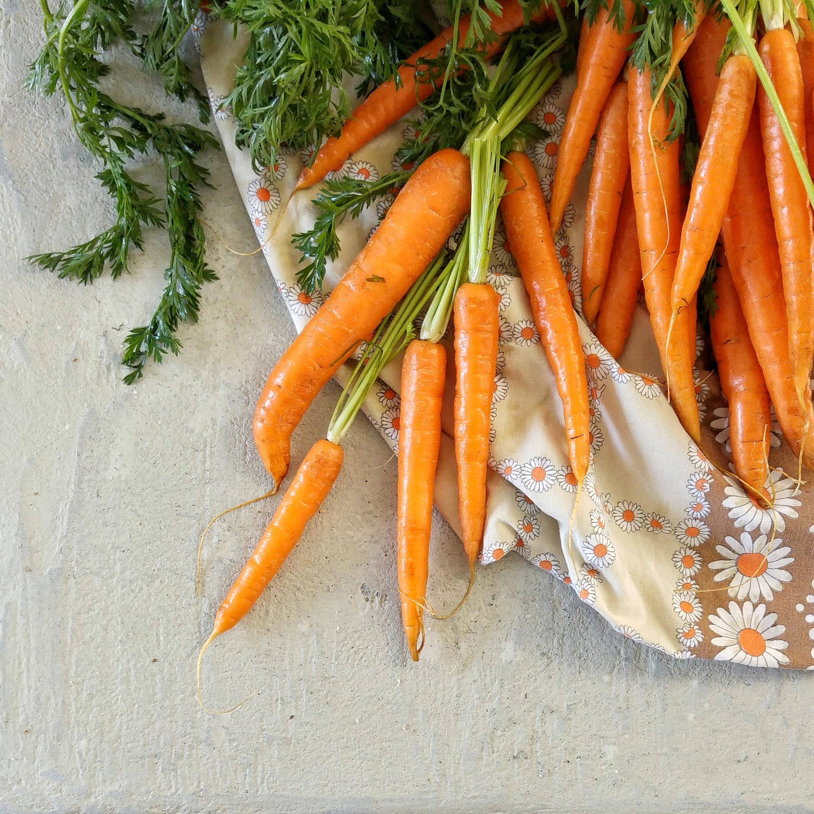 Kliekjessoep uit eigen groentela helpt 1) tegen food waste én 2) bij het eten van 250 gram groenten per dag. Slimme tips voor wie gezonder wil eten.